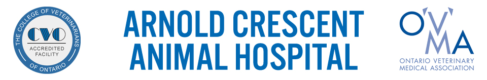 Logo for Arnold Crescent Animal Hospital Richmond Hill, Ontario